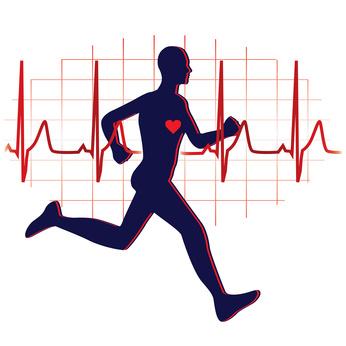 le-coeur-comme-toutes-les-cellules-ont-besoin-dun-effort-physique-53405-