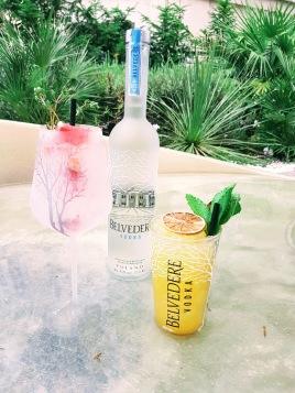 Cocktails à base de vodka ©biboucheetbibouchon