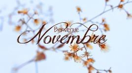 novembre_001 ©DR