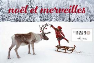 102556-noel-et-merveilles-a-la-ferme-de-gally